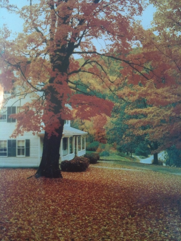 Fall house from dream book